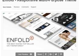 Leer WordPress websites maken met het Enfold Template